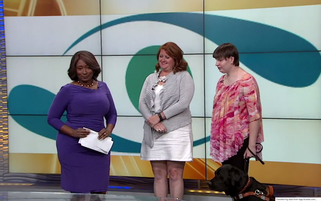 Dogs for a Cause on the Midday News