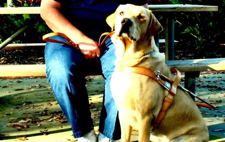Guide Dog Jessie